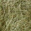 Nature's Own Devon Meadow Hay - 2kg additional 2