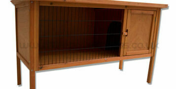 Creating the perfect guinea pig hutch!