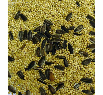 Bartholomews Colonels®Cockatiel Bird Seed Mix 20kg