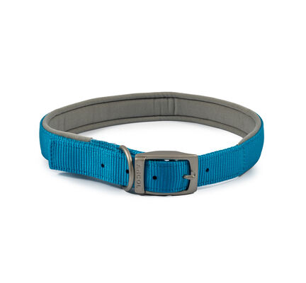 Ancol Viva Nylon Padded Collar Blue