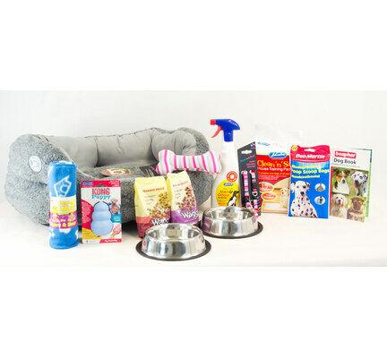 The Pet Express Medium Puppy Dog Starter Kit