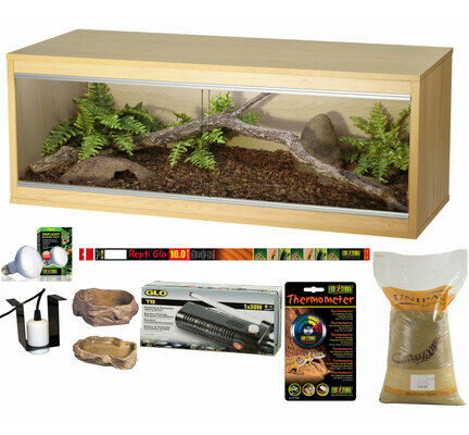 The Pet Express Bronze Bearded Dragon Starter Kit