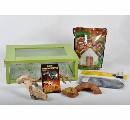 The Pet Express Small Leopard Gecko Starter Kit - Green Vivarium Green (18