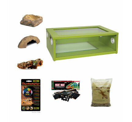 Medium Royal Python/Ball Python Starter Kit Monkfield Vivarium Green (24 Inch)