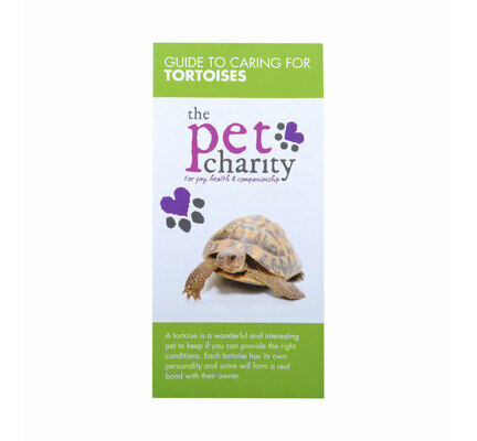 The Pet Charity Tortoise Care Guide