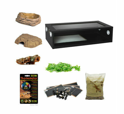 Royal/Ball Python Large Monkfield Vivarium Starter Kit - Black 30 Inch