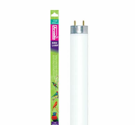 Arcadia UV Bird Lamp T8 Tube