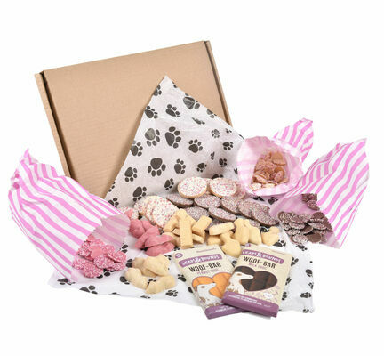 Doggy Deli Chocolate Letterbox Gift Box for Dogs