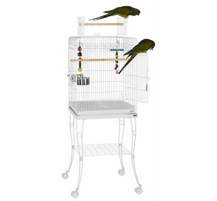 Sky Pet Products Gama White Bird Cage