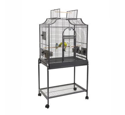 Sky Pet Products Rainforest Amazona I Bird Cage