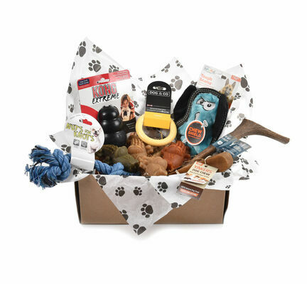 Tough Toy & Treats Subscription Box for Large Dogs