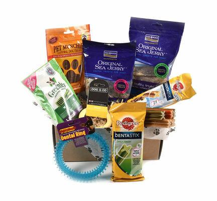 Dental Subscription Box for Medium & Large Dogs