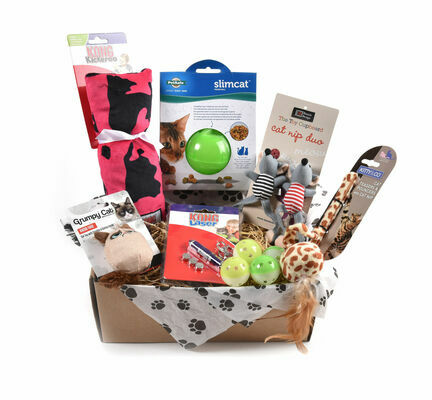 Cat Toy Subscription Box