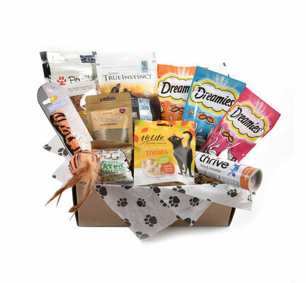 Toy & Treats Subscription Box for Cats