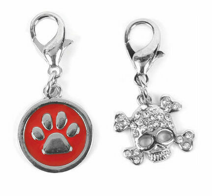Buster & Beau Dog Collar Charm (Assorted Designs)
