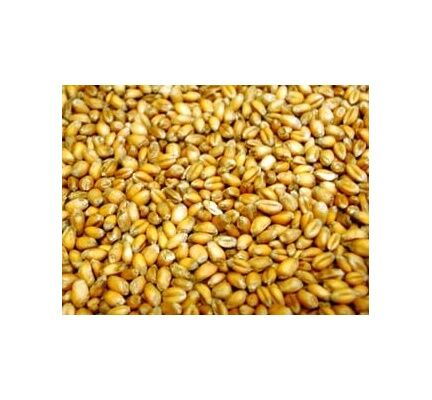 Willsbridge Poultry Wheat 20kg