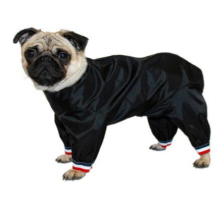 Cosipet Black Half-Leg Trouser Suit