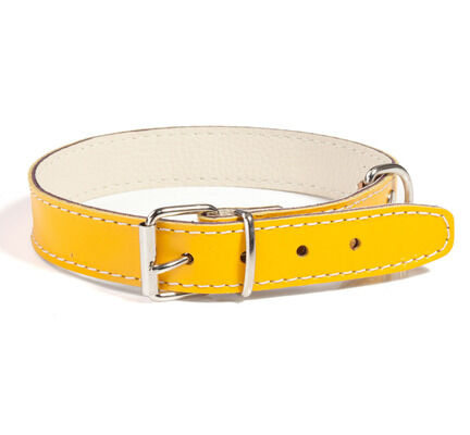 Doggy Things Plain Leather Dog Collar - Yellow