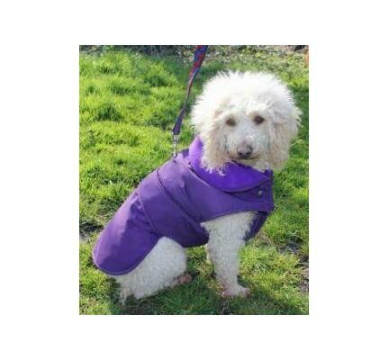 Cosipet Purple Waterproof Weather Resistant Coat