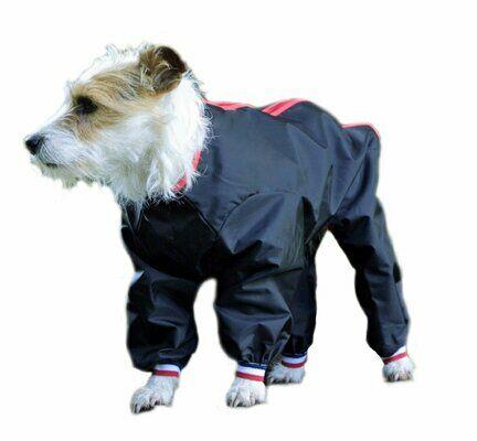 Cosipet Black Dog Trouser Suit