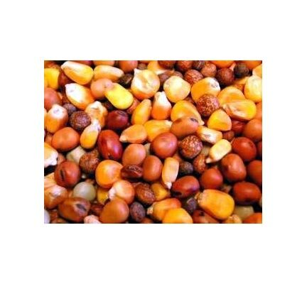 Willsbridge Pigeon Popular Mix Bird Food - 20kg