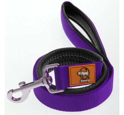 Canny Lead Purple