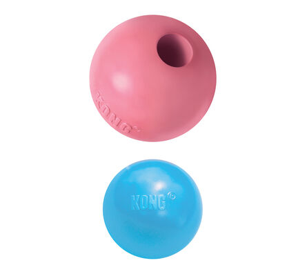 Kong Puppy Ball With Hole