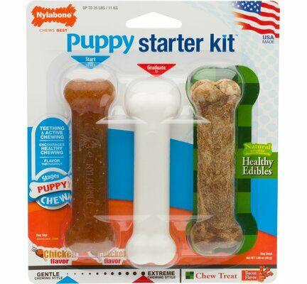 Nylabone Puppy Chew Starter Kit Chicken Small