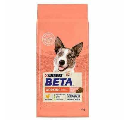Beta Adult Working Adult Dog Chicken