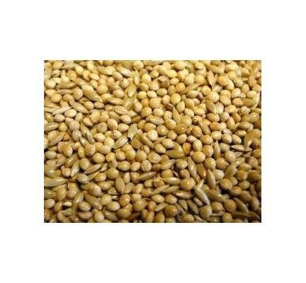 Willsbridge Best Budgie Seed Mix 20kg