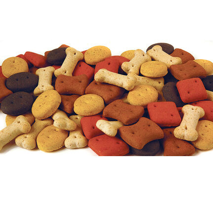 Pointer Oven Baked Dog Treat Biscuits