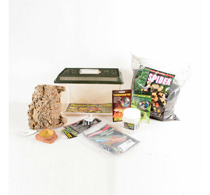 The Pet Express Tarantula Spider Starter Kit