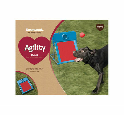 Rosewood Agility Flyball Dog Training Toy