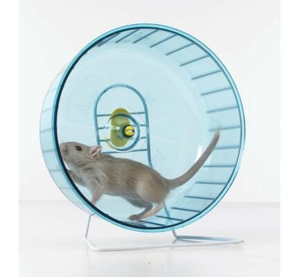 Back-2-Nature Savic Rolly Giant & Stand Exercise Wheel - 27.5cm