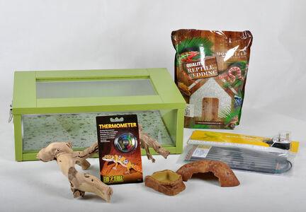 Small Leopard Gecko Starter Kit - Monkfield Vivarium Green (18 Inch)