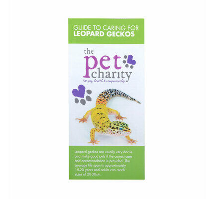 The Pet Charity Leopard Gecko Care Guide