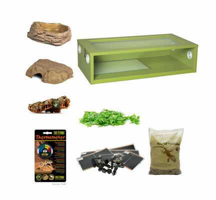 Royal Python Large Monkfield Vivarium Starter Kit - Green 30 Inch