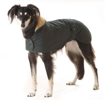 Cosipet Greyhound/Whippet Hunter Wax Coat Dark Green