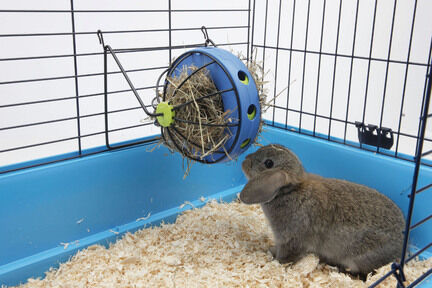 Savic Bunny Toy Feeding Ball 20x20x20cm (including Stand)