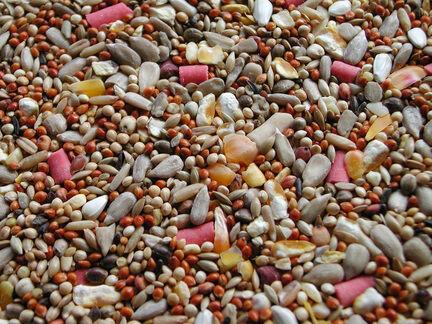 Willsbridge Wildbird No Mess Premium Bird Seed 20kg