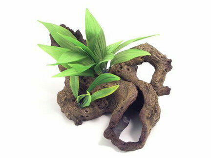Blue Ribbon Decor Mopani Wood W/plants Small 23 X16 X15cm