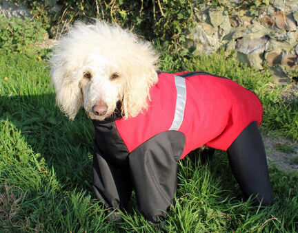 Cosipet Waterproof Dog Trouser Suit-Extreme Red