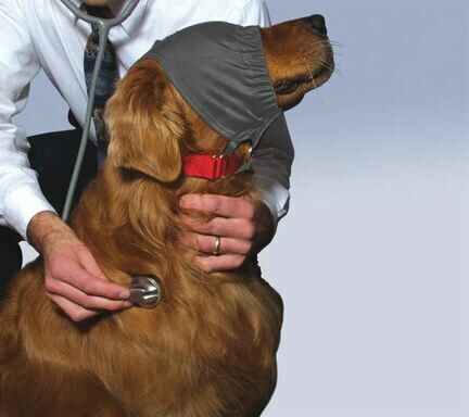 ThunderShirt ThunderCap Dog Calming Cap