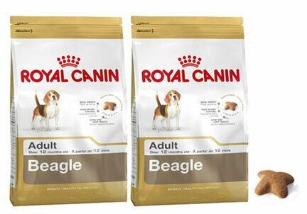 2 x 12kg Royal Canin Beagle Dry Adult Dog Food